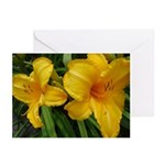 Sunburst Lilies Greeting Cards (Pk of 10)