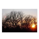 Winter Sunset Postcards (Package of 8)