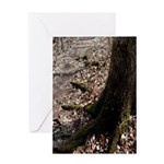Roots of the Forest Greeting Card