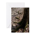 Roots of the Forest Greeting Cards (Pk of 10)