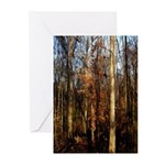 Autumn Arrival Greeting Cards (Pk of 20)