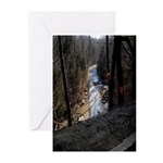 Down Stream Greeting Cards (Pk of 10)
