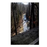 Down Stream Postcards (Package of 8)