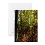 Spring in the Woods Greeting Cards (Pk of 20)