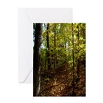 Spring in the Woods Greeting Card