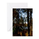 To the Lake Greeting Cards (Pk of 10)