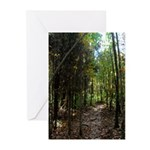 Through the Forest Greeting Cards (Pk of 20)