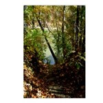 Fishin' Spot Postcards (Package of 8)