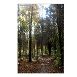 Hike the Woods Postcards (Package of 8)