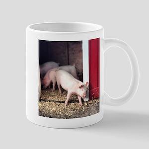 Little Pig Mugs