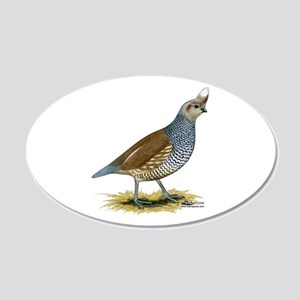 Texas Scaled Quail 20x12 Oval Wall Decal