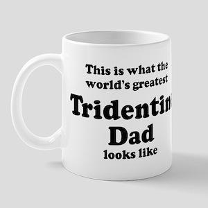 Tridentine dad looks like Mug