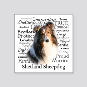 Sheltie Traits Sticker