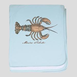 Vintage Maine Lobster scientific illustration baby