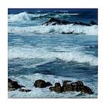 Pacific Coast Tile Coaster