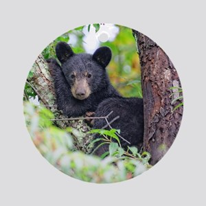Bear Cub relaxing in Tree Ornament (Round)