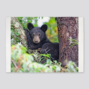 Bear Cub relaxing in Tree 5'x7'Area Rug