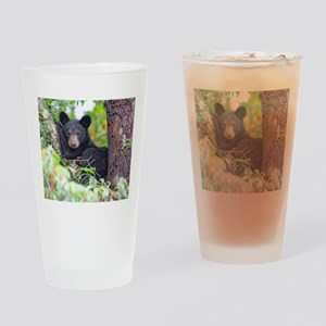 Bear Cub relaxing in Tree Drinking Glass