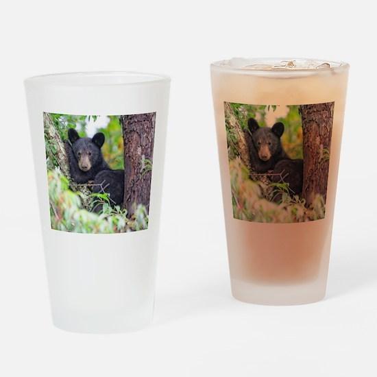 Bear Cub relaxing in Tree Drinking Glass