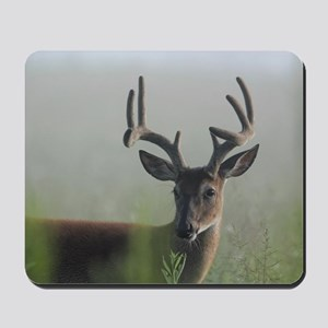 8 Point Buck in Early Morning Fog Mousepad