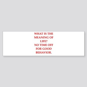 meaning of life Bumper Sticker