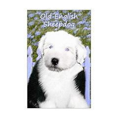 Old English Sheepdog Posters