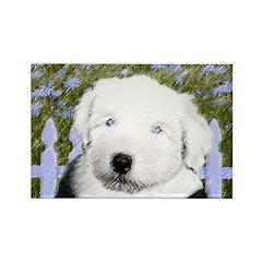 Old English Sheepdog Rectangle Magnet (100 pack)