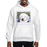 Old English Sheepdog Hooded Sweatshirt