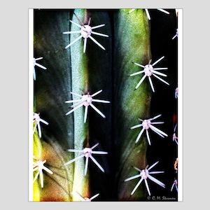 Cactus Needles Detail Posters