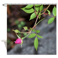 Perfect Pink Bud Shower Curtain