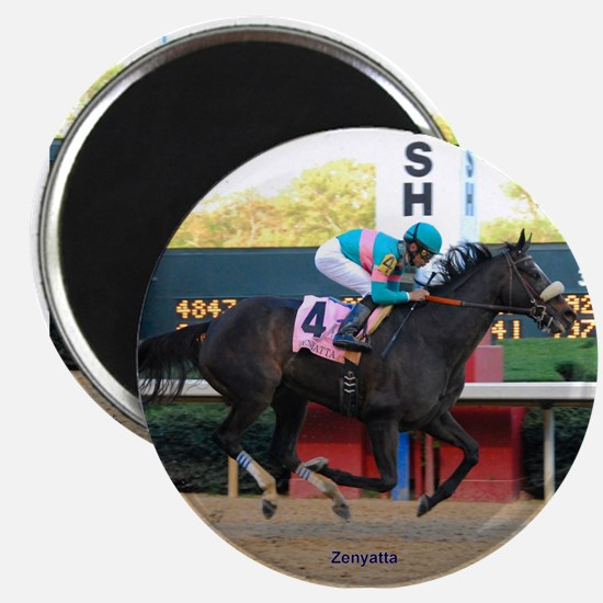 Horse Racing Magnet Magnets