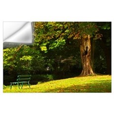 Park Bench Beside The Owenriff River In Oughterard Wall Decal