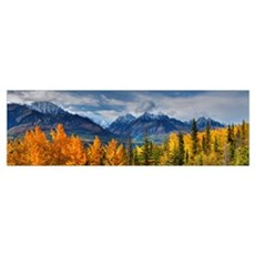 Panoramic View Of The Fall Foliage And Snowcapped  Poster