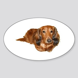 Long Hair Red Dachshund Oval Sticker