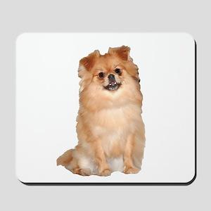 Pomeranian Red Dog Mousepad