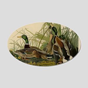 Audubon Mallard duck Bird Vintage Print Wall Decal