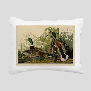 Audubon Mallard duck Bird Vintage Print Rectangula