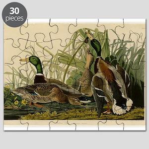 Audubon Mallard duck Bird Vintage Print Puzzle
