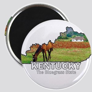 Kentucky . . . The Bluegrass Magnet