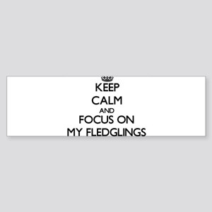 Keep Calm and focus on My Fledglings Bumper Sticke