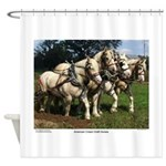 American Cream Draft Horse Team Shower Curtain