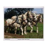 American Cream Draft Horse Team Throw Blanket