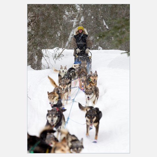 Bill Pinkham On The Trail In A Heavy Snowfall
