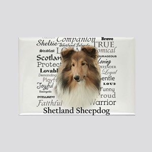 Sheltie Traits Rectangle Magnet