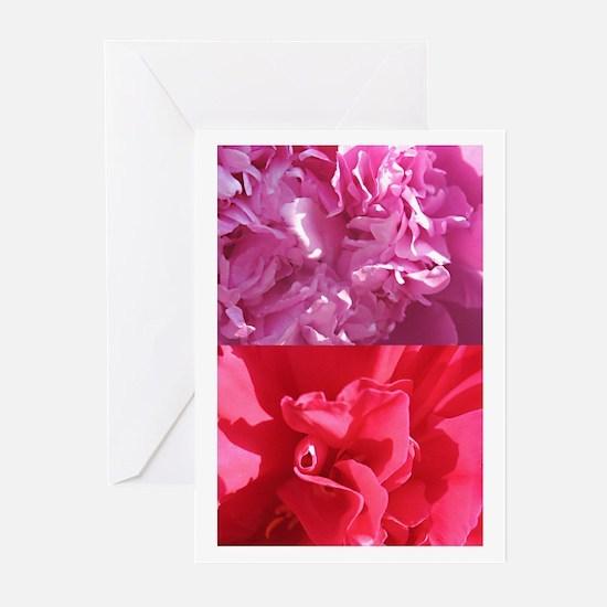 peonyDuet camara Greeting Cards (Pk of 10)