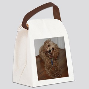 Schnoodle Canvas Lunch Bag