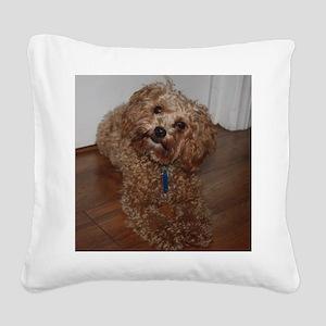 Schnoodle Square Canvas Pillow