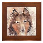 Shetland Sheepdog - Sheltie Framed Tile