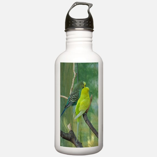 Yellow budgie Water Bottle