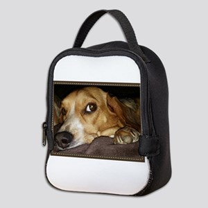 Beagle ~ One Love Neoprene Lunch Bag